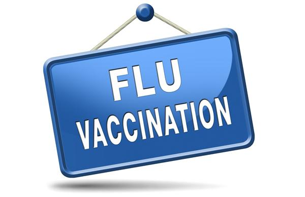 Flu and The Seasonal Flu Vaccine
